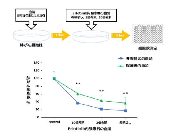 (図)ヒト血清を用いた喫煙のEGFR阻害薬の治療阻害効果