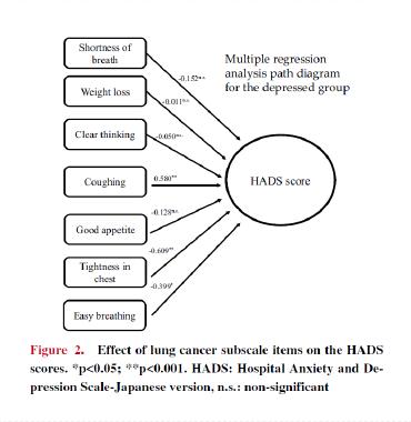 図:抑うつ症状の程度を示すHADS scoreに影響する要因